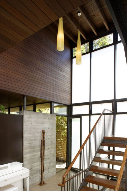 the minimalistic tree house architecture by kaa design group dering hall portfolio