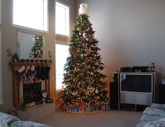 Christmas Tree Pictures In Homes : Christmas tree decoration tips and suggestions