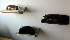 Curve Wall Mounted Pet Bed By Akemi Tanaka