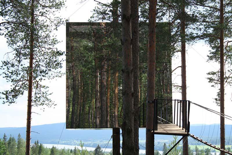 Tree hotel 3