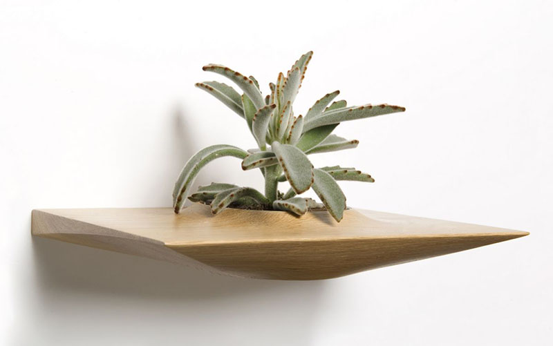 Plant Pods 2