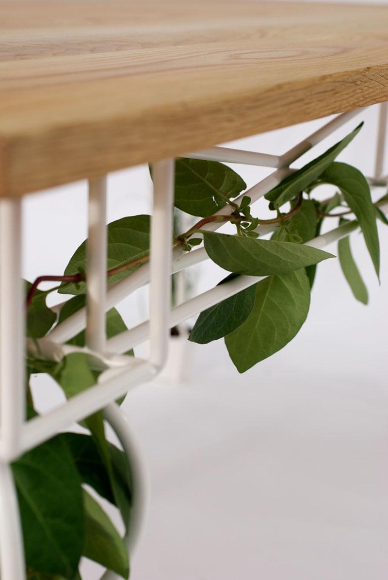 Plantable Garden Table 5