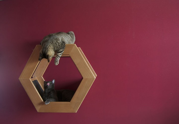 Wall Mounted Cat Shelf HabiCat 1