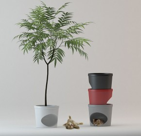 Pet Planter by Studio Mango