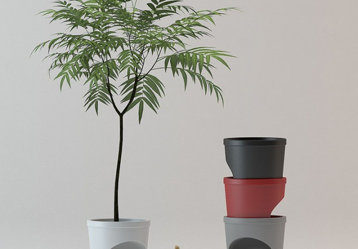 Pet Planter 1