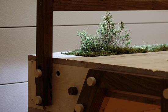 The Senescent Desk 3