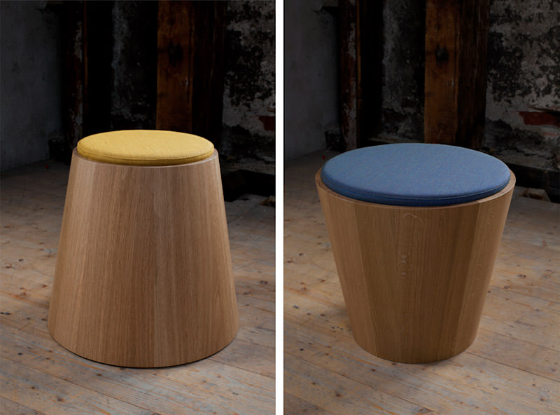 Coniferous Collection by Joint Perspectives