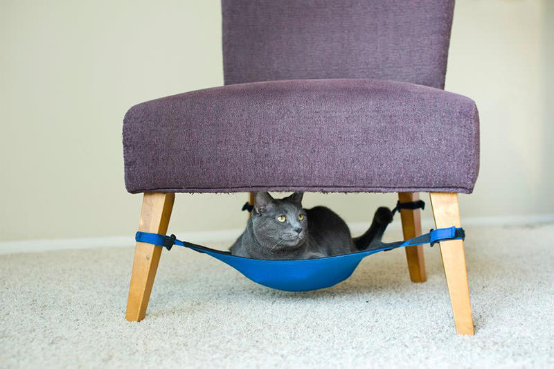 Kitty Cradle Cat Hammock by Greg Hora