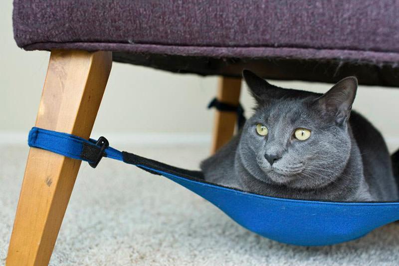 Kitty Cradle Space Saving Cat Furniture