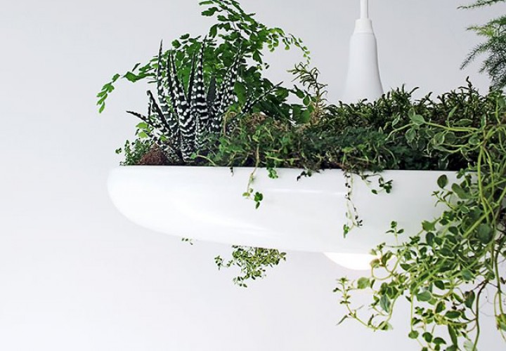 babylon-plantable-light-f