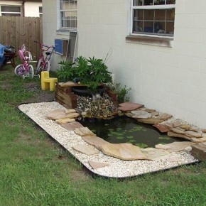 Customizing a Backyard Pond