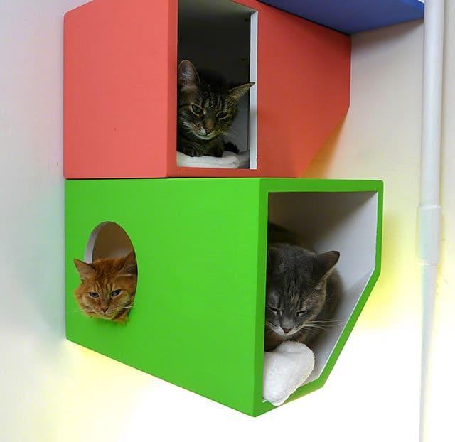 Catissa - Modern Four-Storey Cat Home