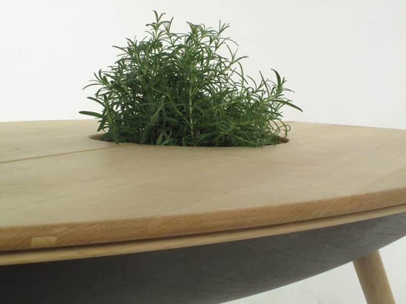 Spire Plantable by Philipp von Hase