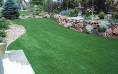 Artificial Grass and Other Ways to Cut Water Usage