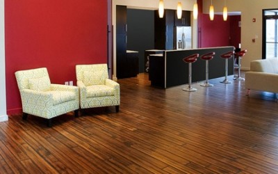 Choosing Bamboo over Hardwood Flooring