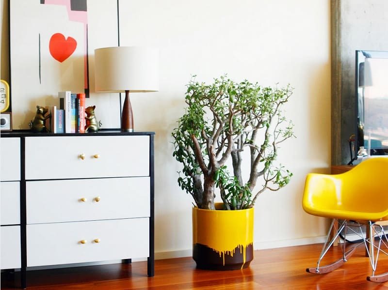 Small details for a more pleasant home interior1