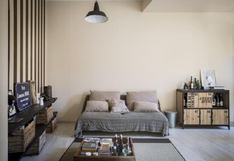 UNIQUE 35 SQUARE-METRE MICRO-HOME