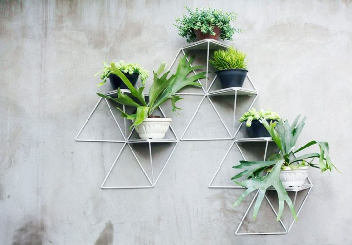 Creative geometric garden modules