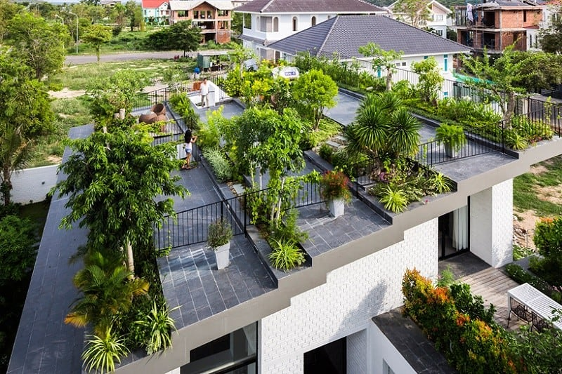 House in vietnam with a green rooftop garden for House roof garden design