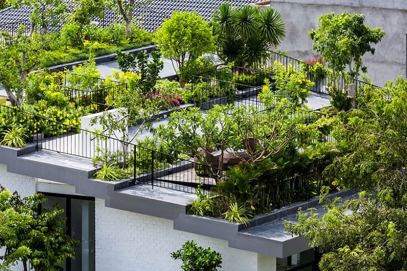house-in-vietnam-with-a-green-rooftop-garden1