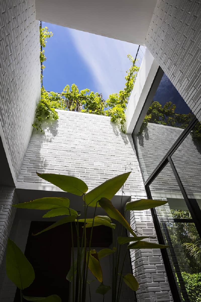 house-in-vietnam-with-a-green-rooftop-garden6