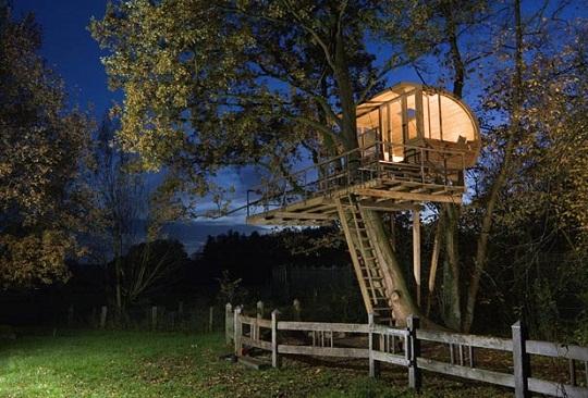 baumraum Treehouse at Night