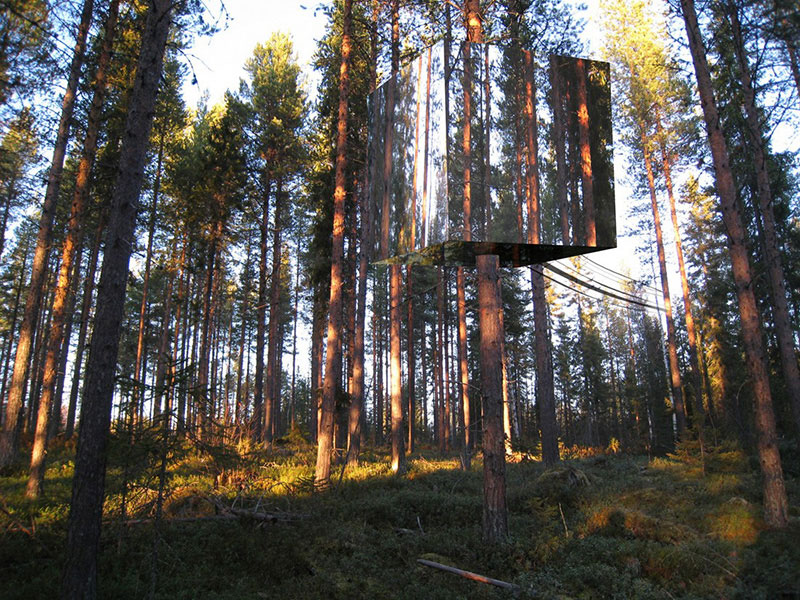 Tree hotel 1
