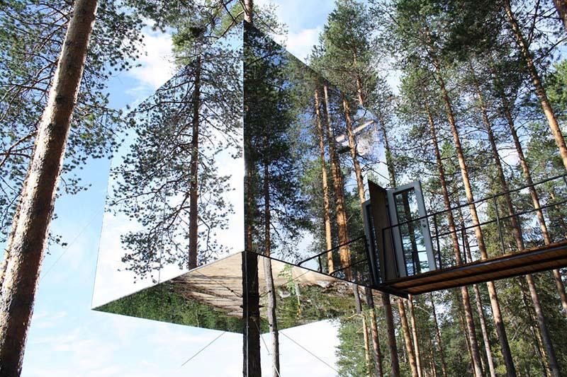 Tree hotel 4