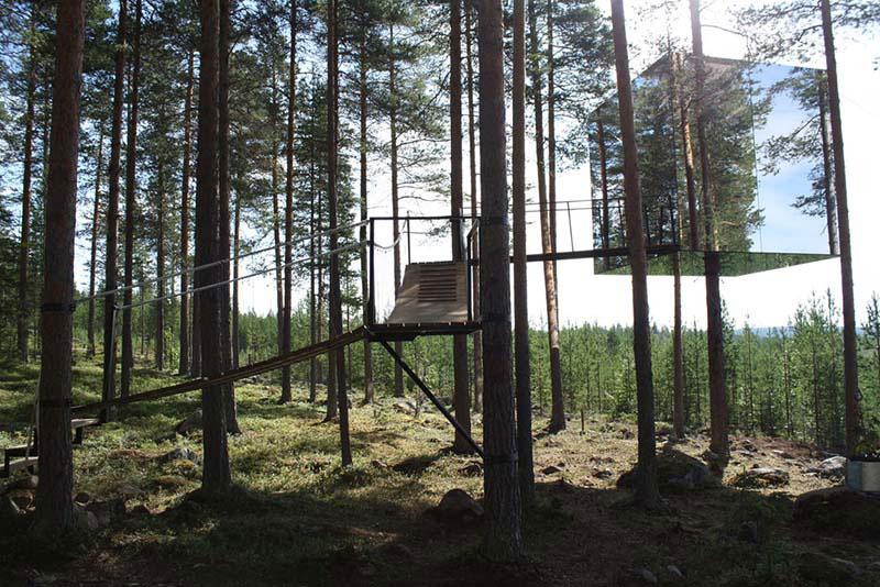 Tree hotel 5