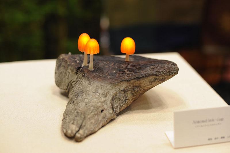 Mushroom Lamps by Great Mushrooming 5