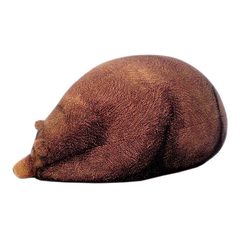 Sleeping Grizzly Bear Bean Bag 3
