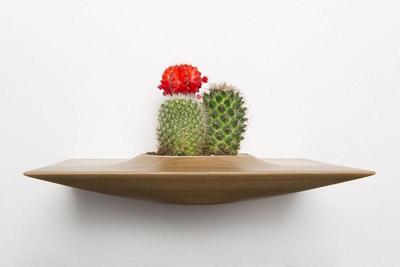 Plant Pods 1