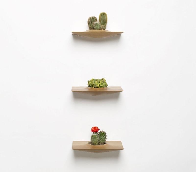 Plant Pods 3