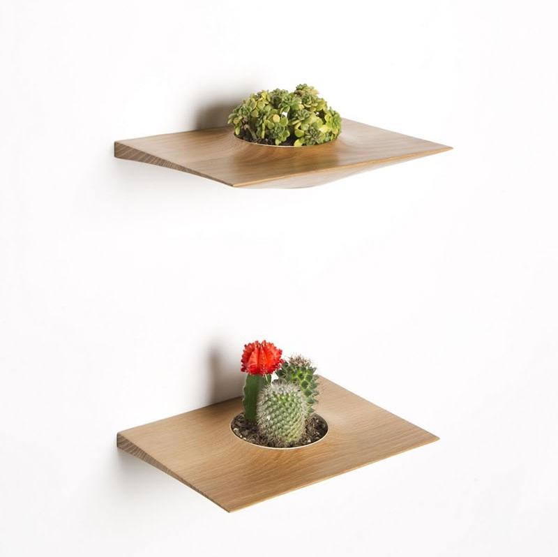 Plant Pods 4