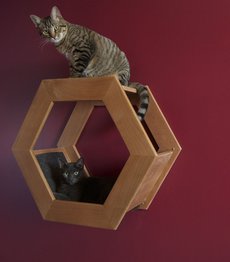 Wall Mounted Cat Shelf HabiCat 3