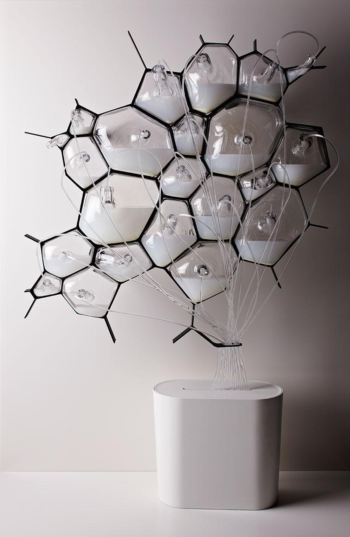 Bio-Light concept