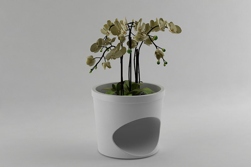 Pet Planter 2