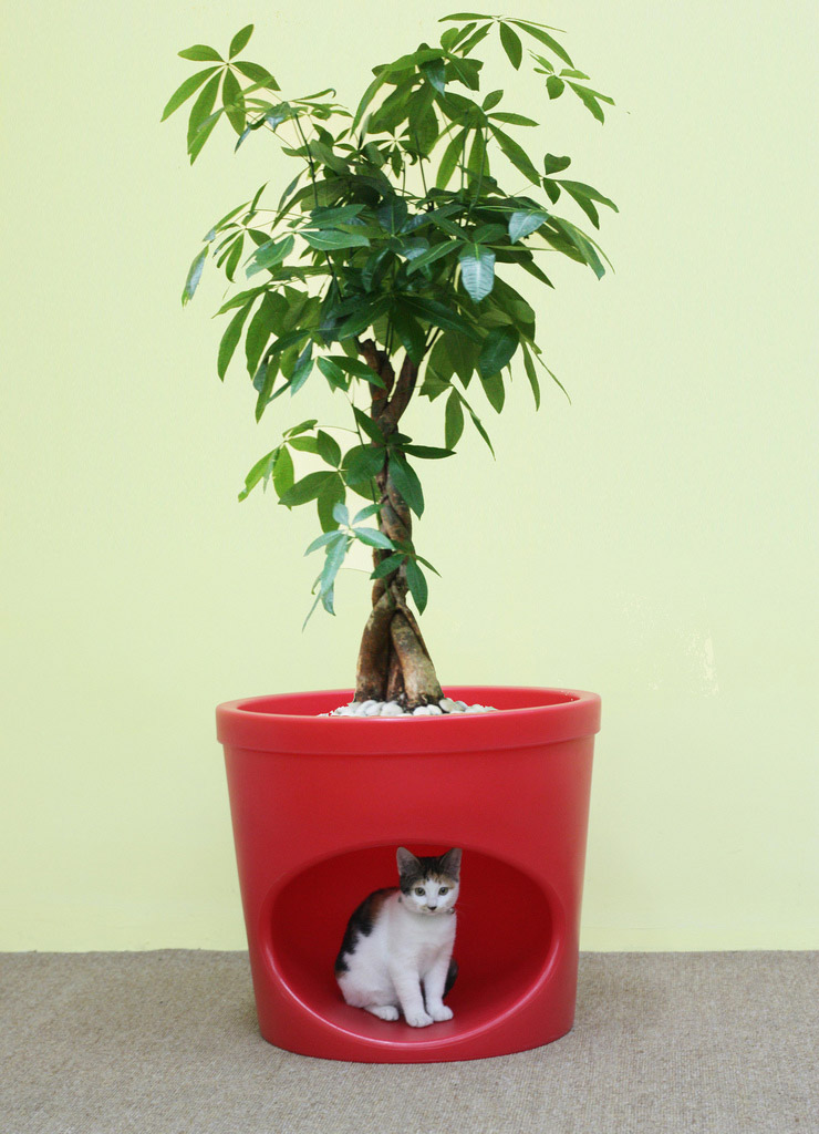 Pet Planter 4
