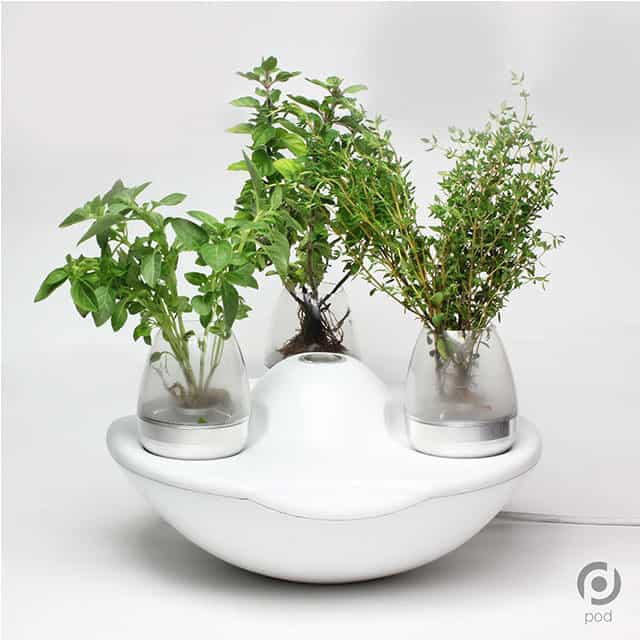 Pod Fogponic Indoor Garden System by Greenfingers