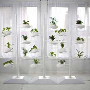 Live Screen Indoor Garden by Danielle Trofe