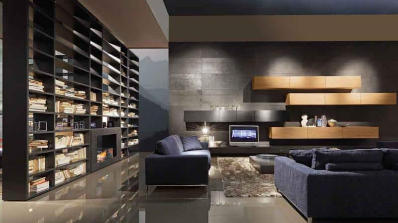Modern Living Room with Large Bookcase
