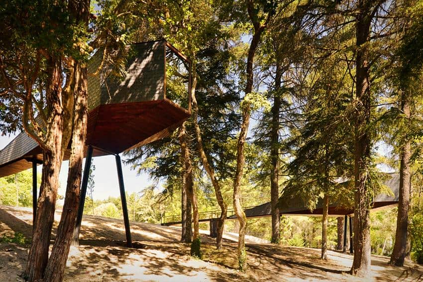 Tree Snake House by Rebelo de Andrade Studio