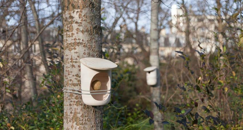 Mikko Birdhouses and Feeders by Pygmalion Studio