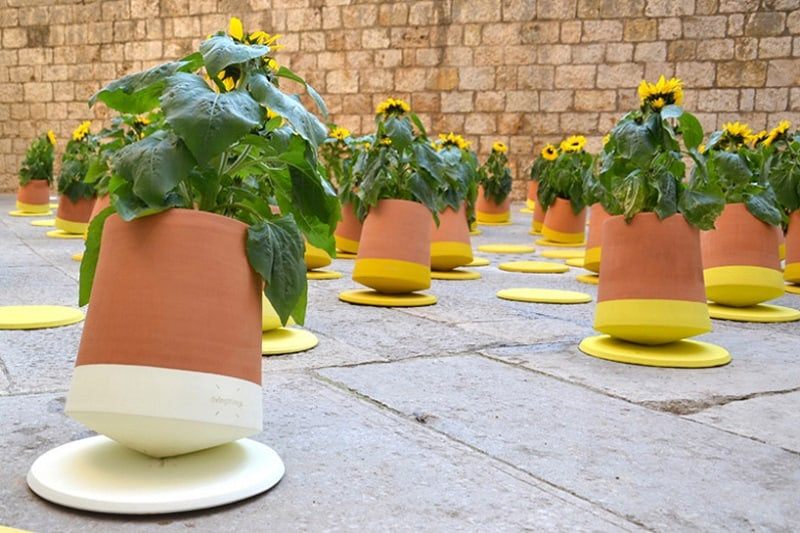 Voltasol, rotating pot that follows the movement of the sun2