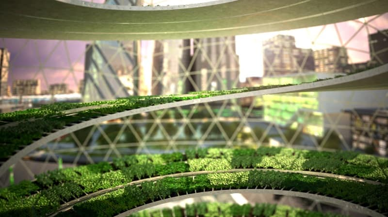 Greenhouses for urban agriculture in the large cities6